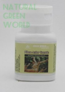 green-world-pilose